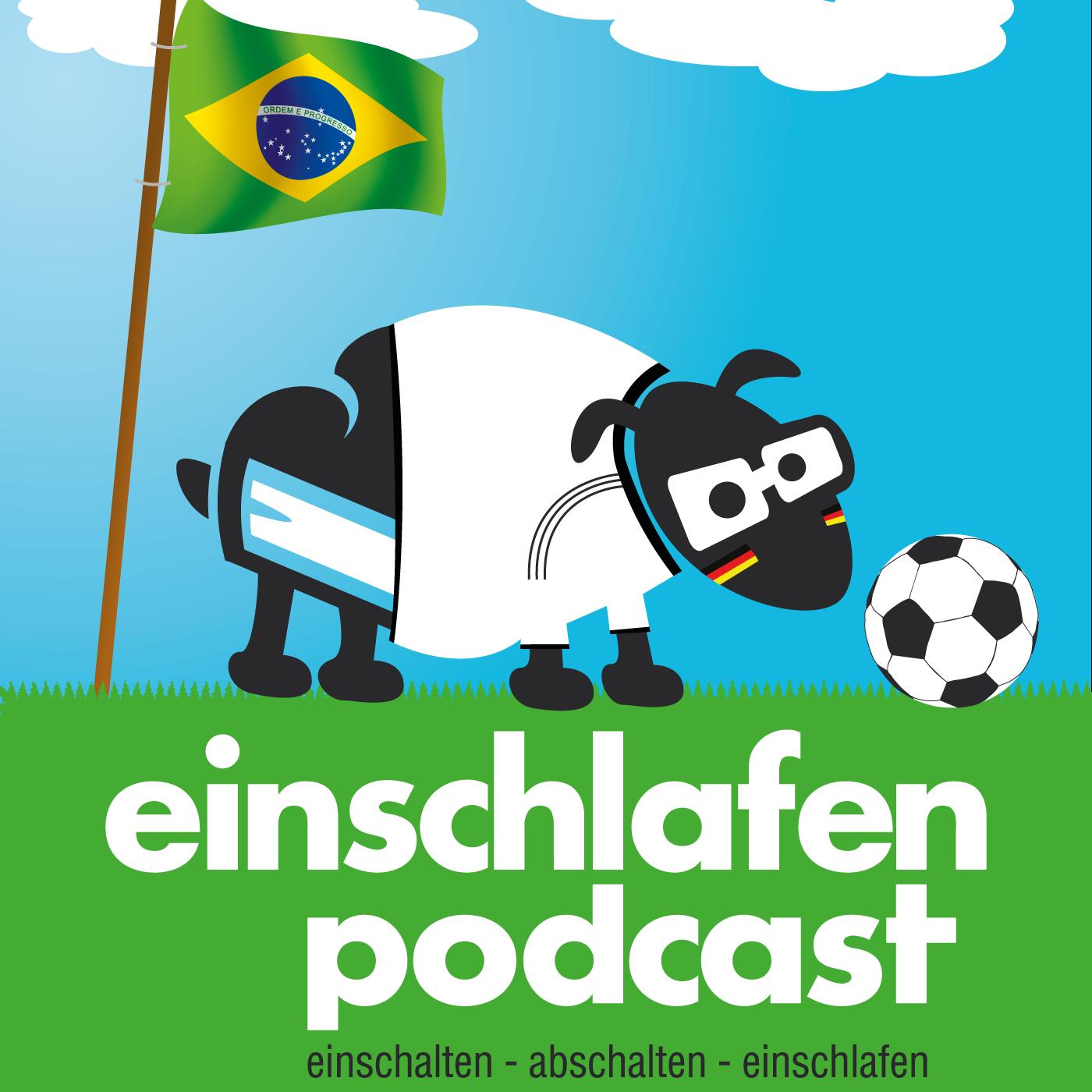 Fussball-WM, 48h Wilhelmsburg und Immanuel Kant - Episodenbild