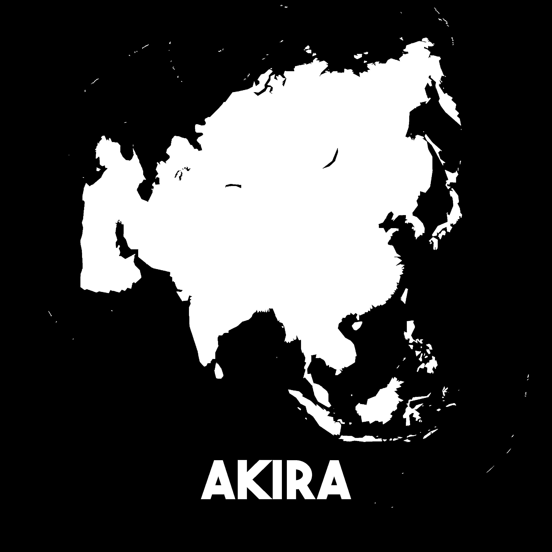 FK2_08 Akira